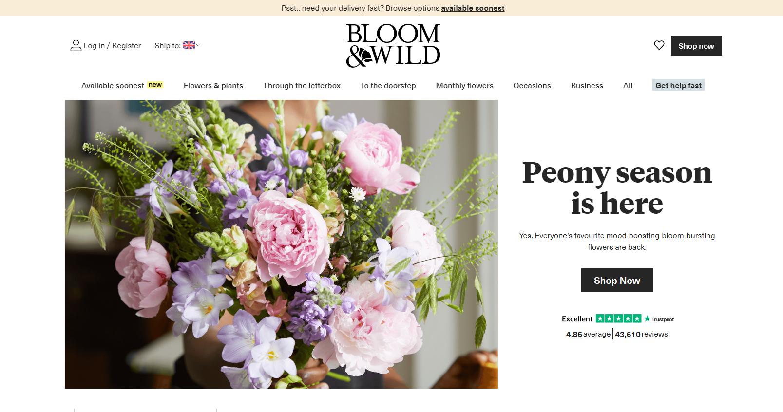 Bloom And Wild screenshot